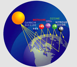 Greenhouse gases include CO2, Methane, Ozone, Nitrous Oxide, and CFCs
