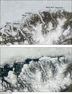 Changes in five Canadian ice shelves from July to August 2008
