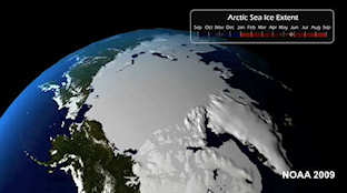 Summer Arctic ice has continued to melt year-to-year; click to see video
