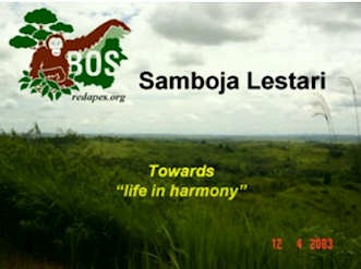 Towards life in harmony; click to see the video